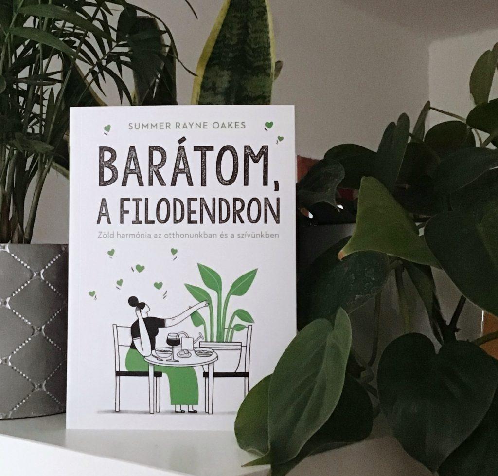 Barátom,a filodendron